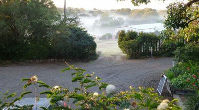 5.Misty-Winter-Morning