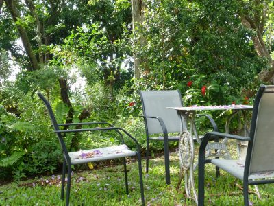front garden w red ixoras, chairs, silver table dec 2016