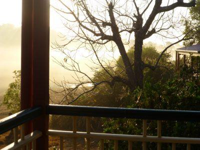 fogg morn, cott, rail, bare pecans, dam