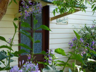Back door BURTON + flowers