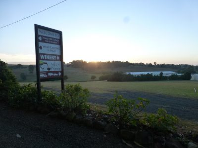 Sunrise, sign, winery building copy